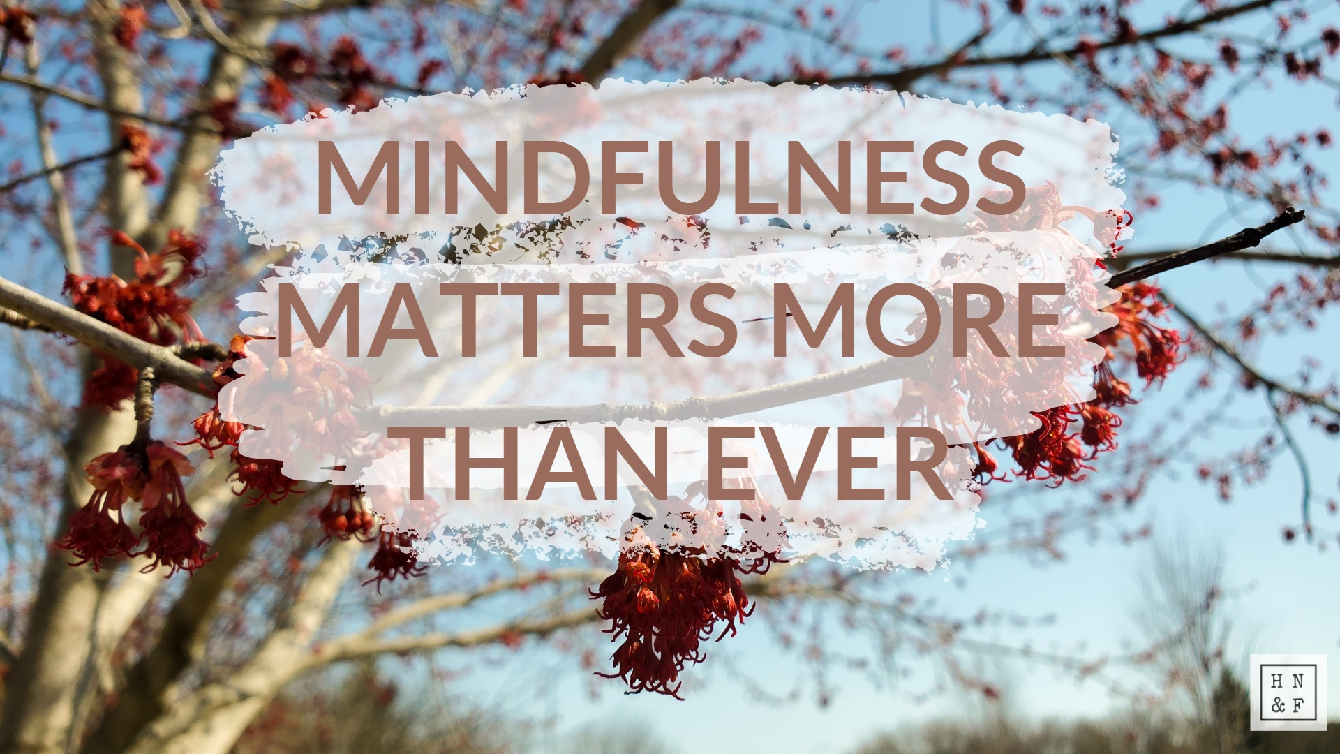 Mindfulness Matters More than Ever